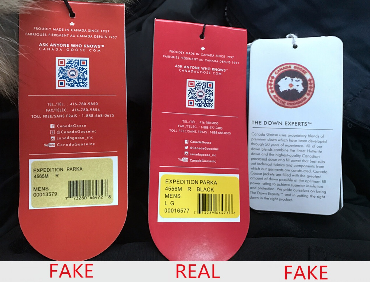 canada goose black label fake